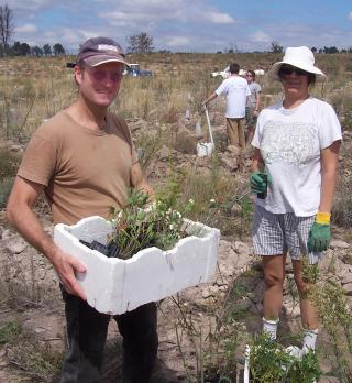 Mike planting at Greening Australia Mt Stromlo